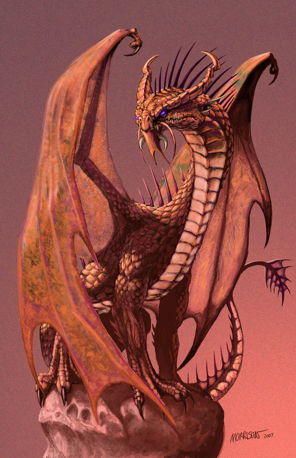 Copper_Dragon_by_SMorrisonArt.jpg