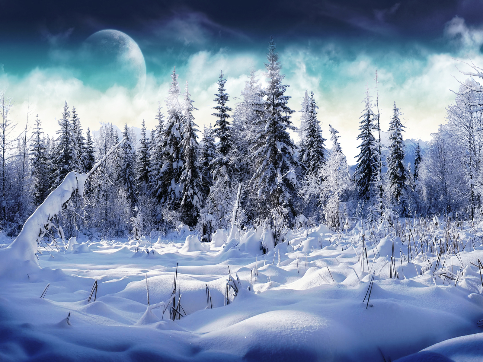 winter-wonderland-2-wallpapers_25521_1600x1200.jpg
