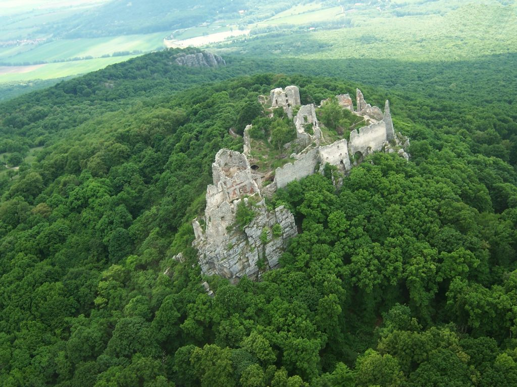 gymes_castle__ruins__forest_143669.jpg