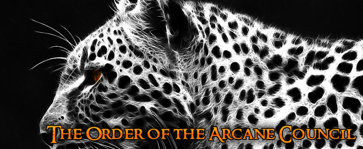 The order of the arcane council c