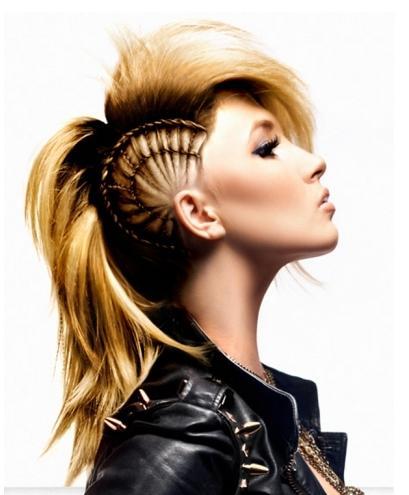 Punk-Braided-Hairstyle-idea.jpg