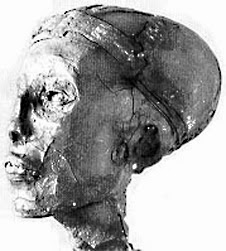 mummy_head_side_1.jpg