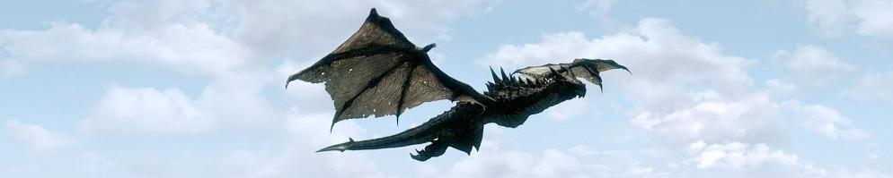 Dragon rider banner