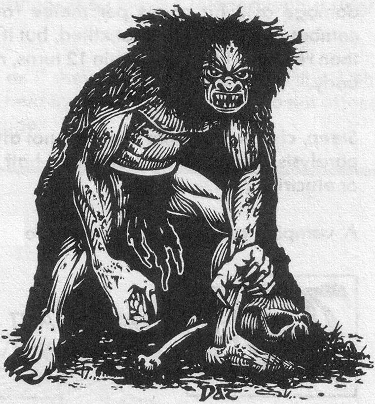 ADD003MonsterManual212Wight.jpg