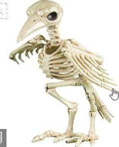 skeletal_raven.png