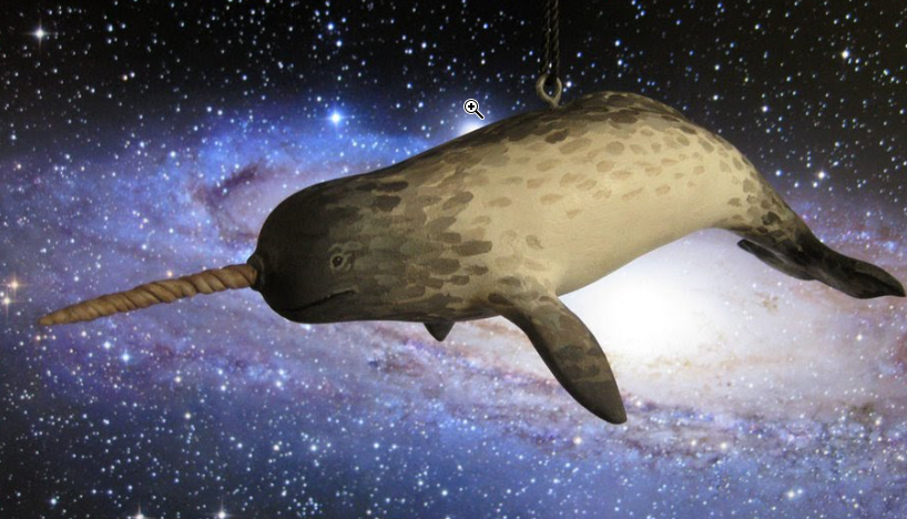 starwhal.png