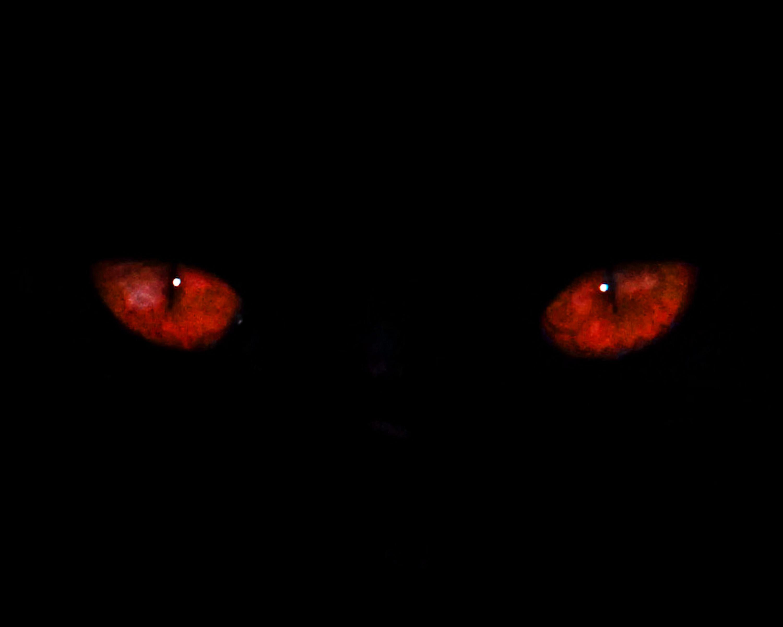 Dark_eyes.jpg
