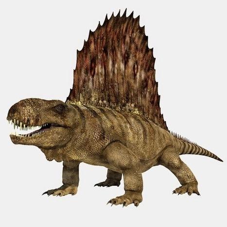 monster_-_Dimetrodon.png