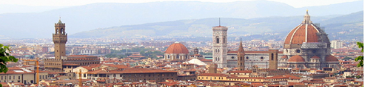 Florence topview