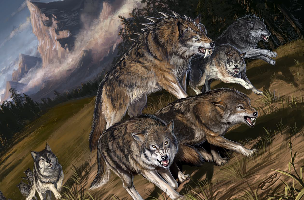 darkmoon-wolves.png