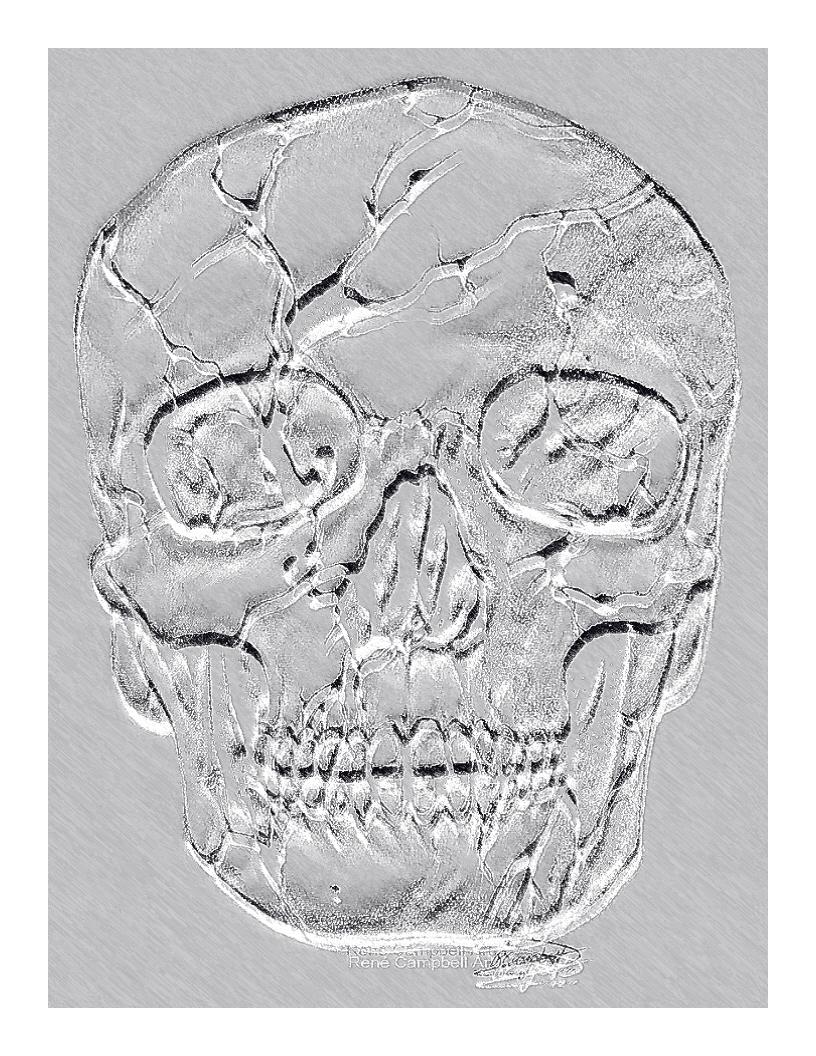 Skull_sketch_edit.jpg