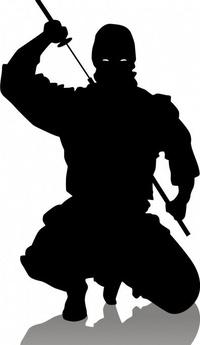 thumb_ninja2.jpeg