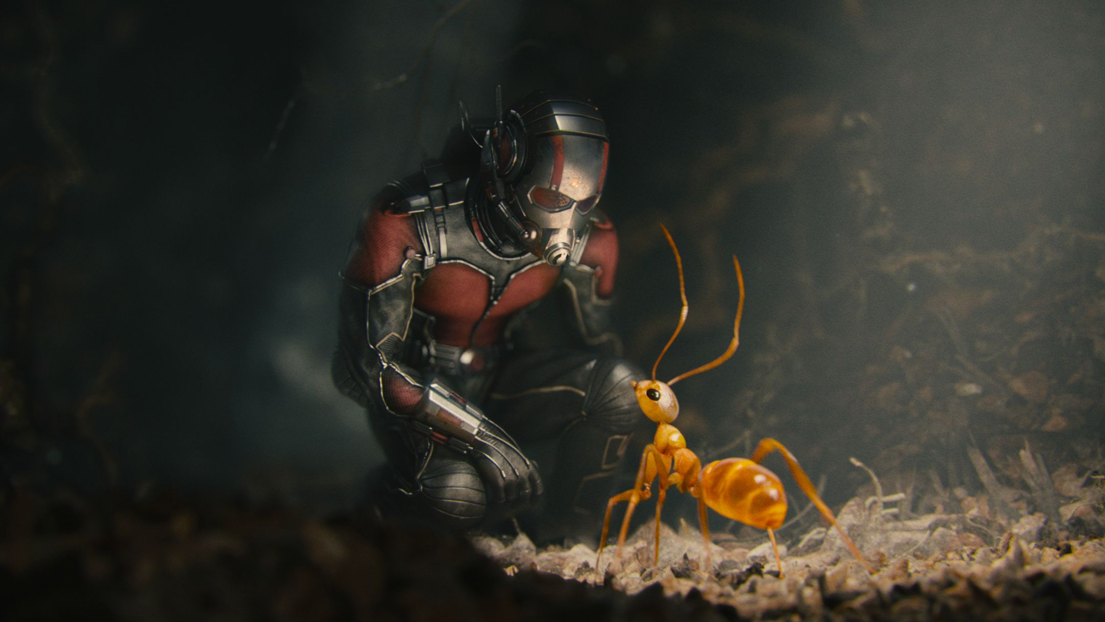 Ant-Man2.jpg