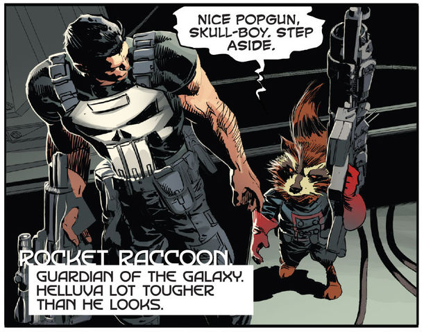 Rocket_meets_the_Punisher.jpg