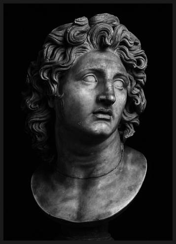 Alexander.jpg