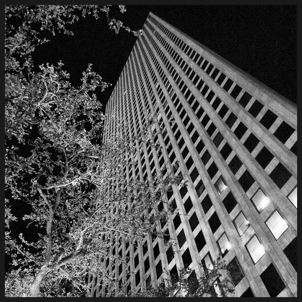 One_Shell_Square.jpg