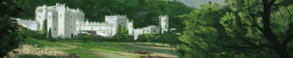 Castleinthehillsbanner