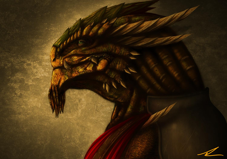 rimas_the_dragonborn_by_fushark-d3iiidf.png