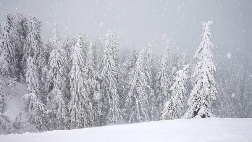 blizzardstorm.jpg