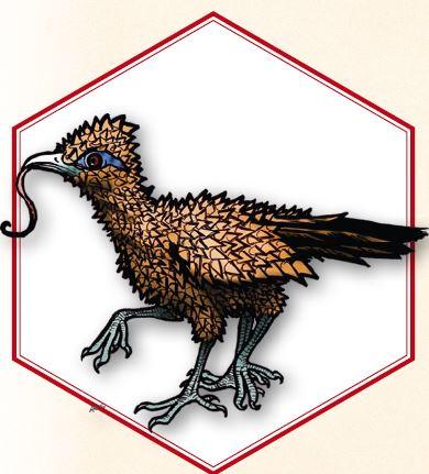 thorn-bird.JPG