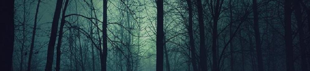Dark forest t2
