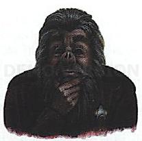 Papaub.JPG