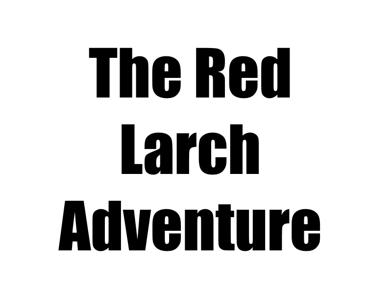 The_Red_Larch_Adventure.png