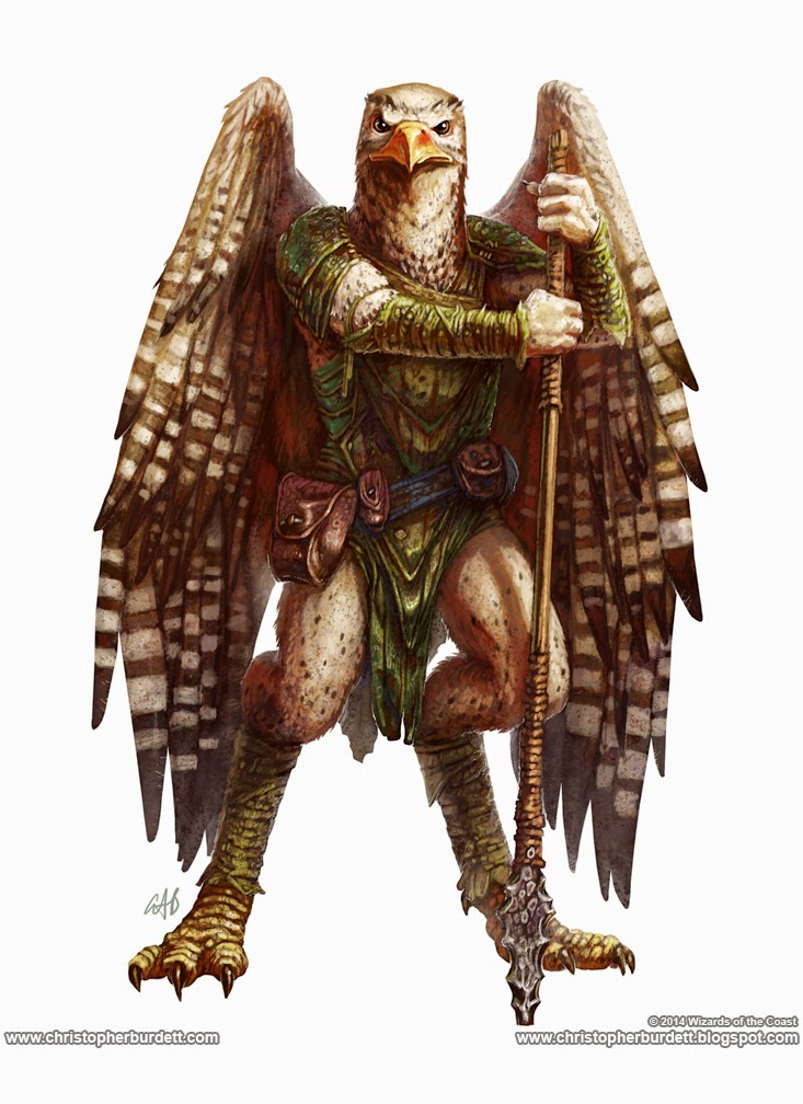 Monster-Manual-Aarakocra.jpg