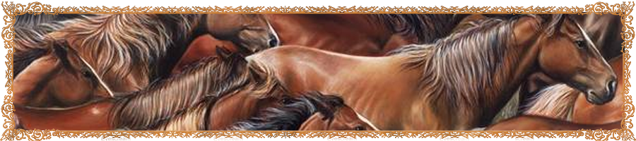 horses_banner.png