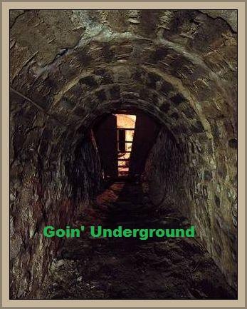 Goin_Underground.jpg