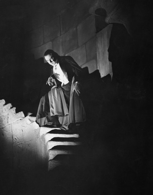 dracula-1931-002-bela-lugosi-stairs-sharp-shadows-00n-d64.jpg