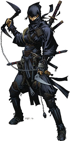 Ninja_1.jpg