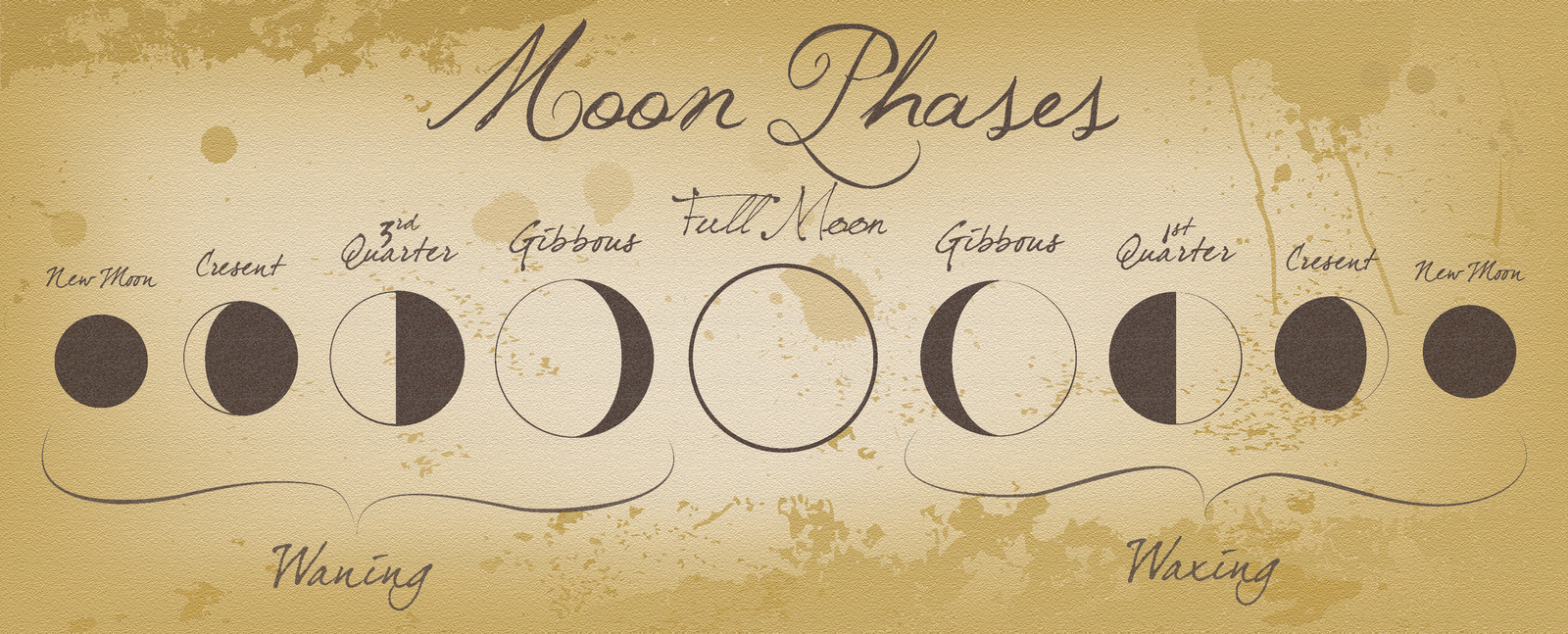 moon_phases_by_izzabell-d3inrqv.png