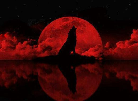 Blood-Tetrad-Moon-Werewolf.jpg