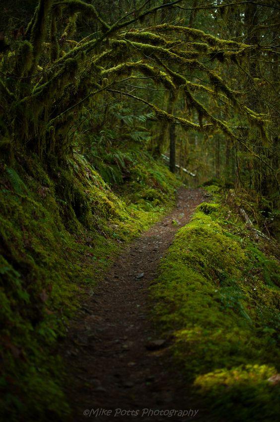 Agatha_s_Trail.jpg