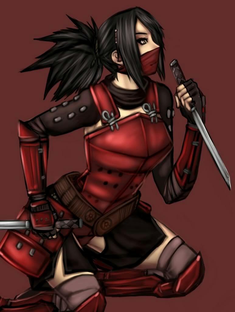 Ninja-4.jpg