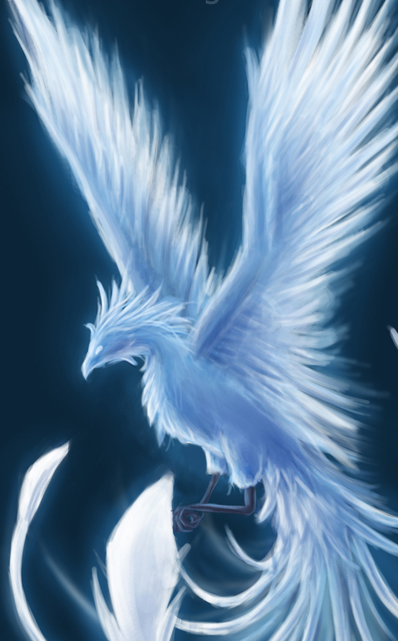winter_phoenix___contest_entry_by_shadowdragon22.jpg