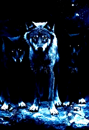 Wolves.png