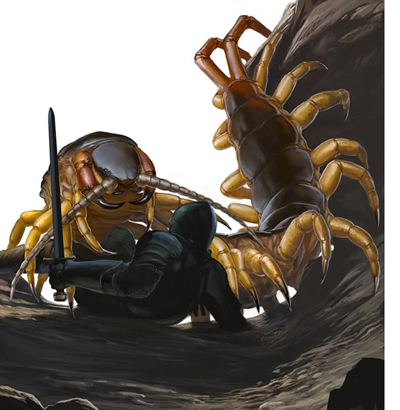 Centipede-01.jpg