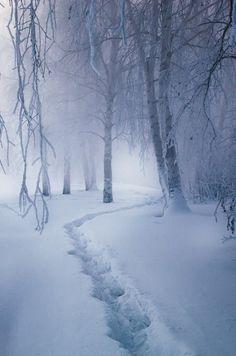 Snowy_Clearing.jpg