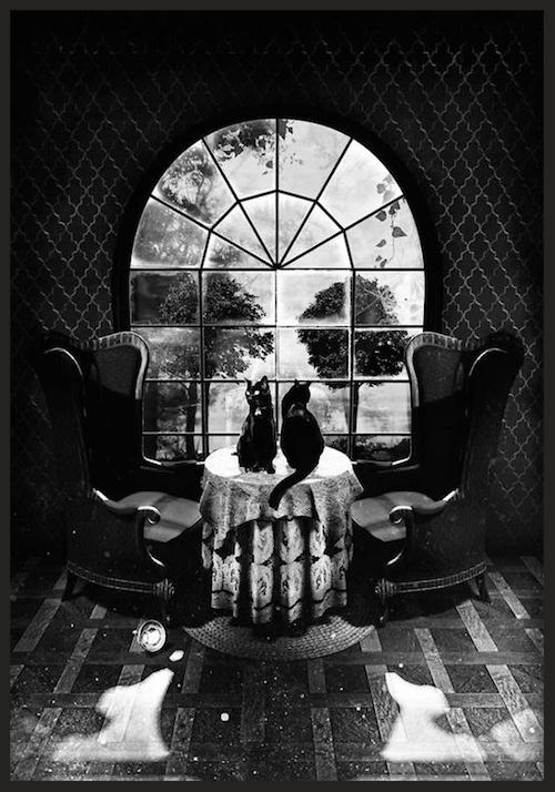 Paradox_Skull.png