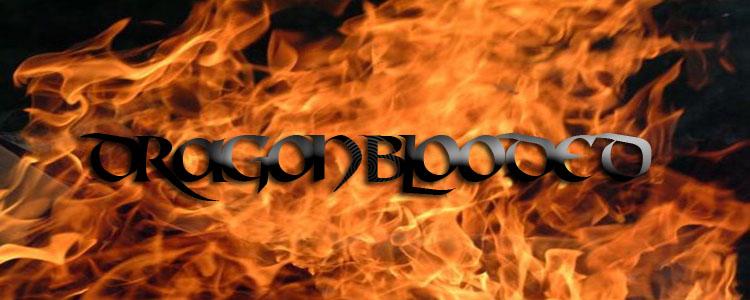 33 15 15   fire flame texture web copy