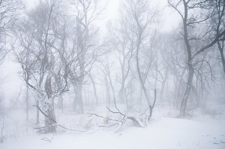 blizzard_2_by_obsession_stock-d85njfb.jpg
