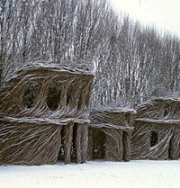 Treehouses-Dougherty-2.jpg