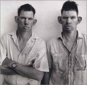 inbred-brothers5.png