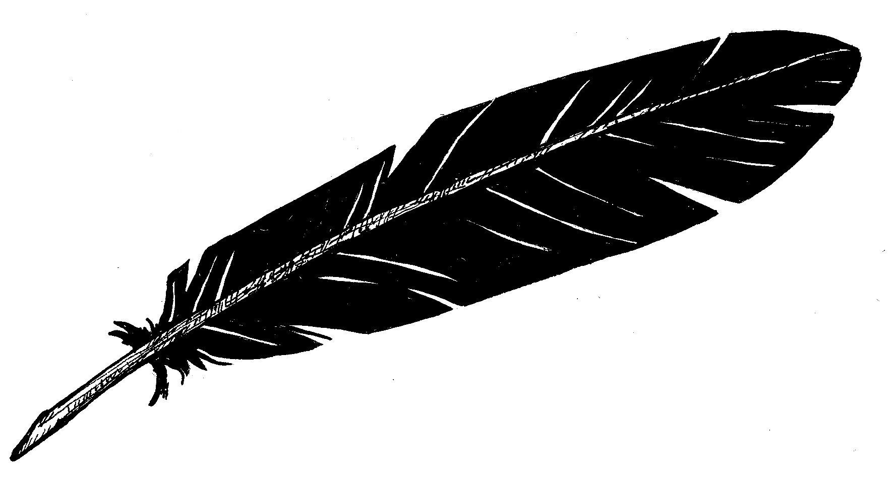 Raven_Feather.jpg