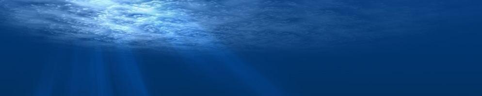 Ocean deep silence