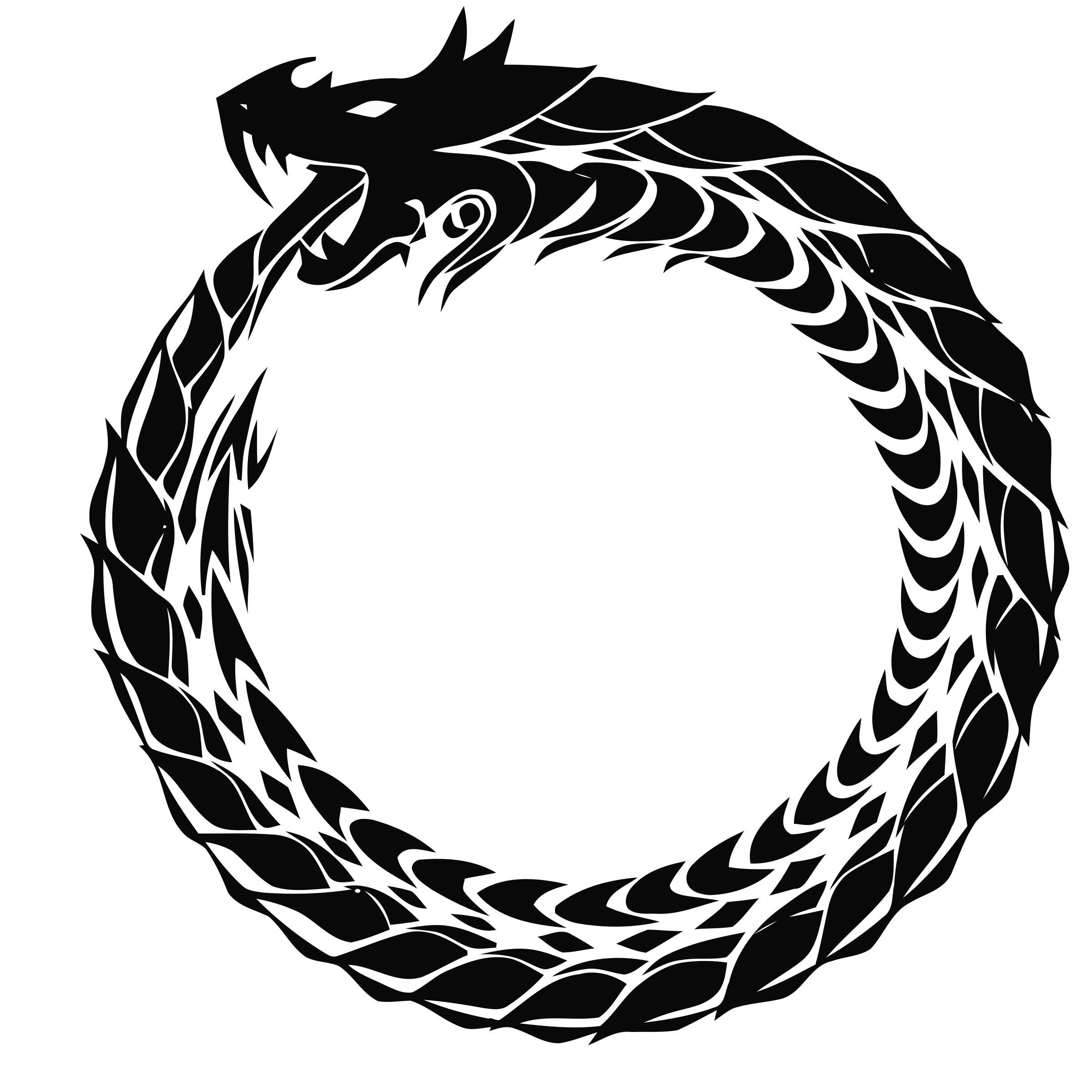 Ouroboros transparent