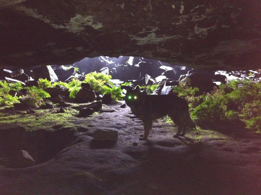 my_cave_werewolf_by_vigbrastle-d535vg8.jpg