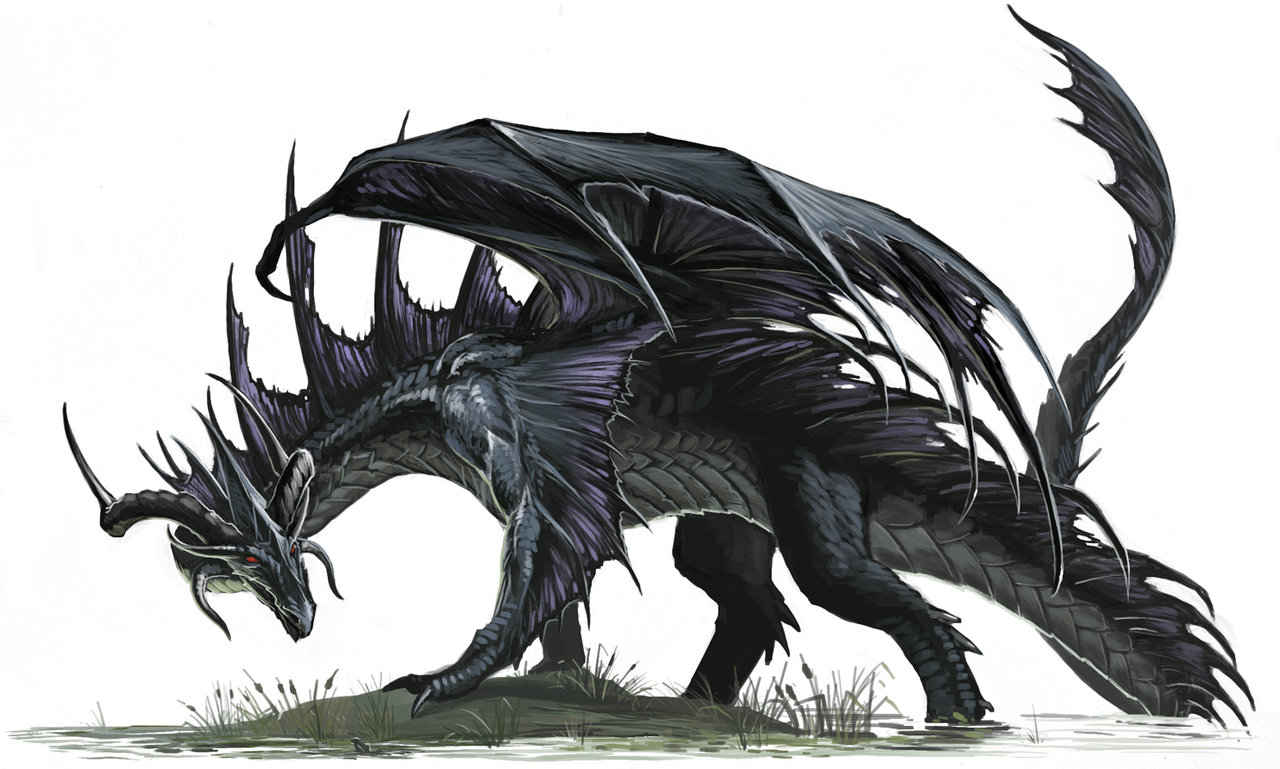 ben-wootten-black-dragon-blackfang-pathfinder.jpg